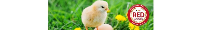 Productos y suplementos alimenticios naturales para aves de corral.